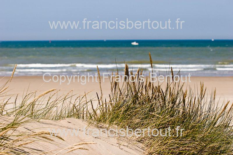 nord et pas de calais images diverses de la cote d 39 opale bord de mer oyats dunes 120 26437. Black Bedroom Furniture Sets. Home Design Ideas